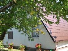 Casă de vacanță Ungaria, Casa de oaspeți Gina