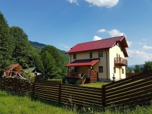Accommodation Schineni (Săucești), Carmen Vila