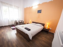 Apartament Nicorești, Central Studio