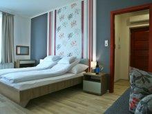 Accommodation Fadd, Sugó Pension