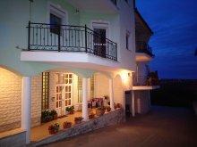 Accommodation Csokonyavisonta, Fortuna 24 Apartment