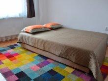Cazare Sfântu Gheorghe, Apartament Modern