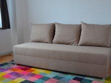 Accommodation Dobolii de Jos, Modern Apartment