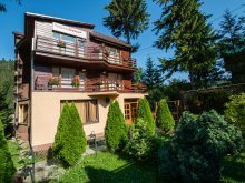 Bed & breakfast Braşov county, Crescent Guesthouse
