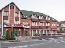 Hotel Satu Nou (Urechești), Hotel Flamingo