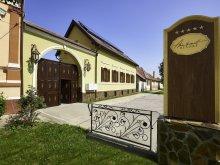 Accommodation Valea Cetățuia, Ambient Resort