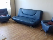 Accommodation Anghinești, Adrian Apartment
