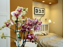 Apartament Sály, Orchidea Apartman