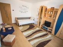 Accommodation Întorsura Buzăului, Morning Star Apartment