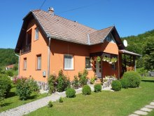 Apartament Popoiu, Apartament Vitus Lenke