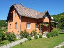 Apartament Solonț, Apartament Vitus Lenke