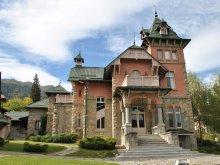 Vilă Golești (Ștefănești), Vila Domina