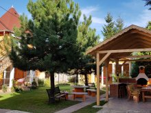 Apartament Miskolctapolca, Apartament Liget