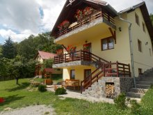 Accommodation Plaiu Nucului, Gyorgy Pension