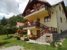 Accommodation Trestioara (Chiliile), Gyorgy Pension