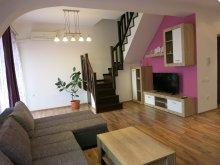 Accommodation Sacalasău Nou, Penthouse Apartment