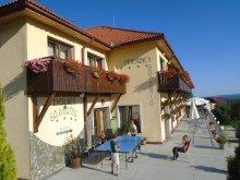 Accommodation Teodorești, Castania Guesthouse
