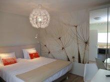 Accommodation Brădețelu, H49 Apartment