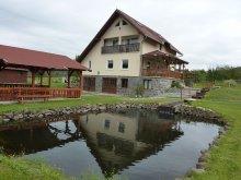 Casă de oaspeți Barajul Zetea, Casa la cheie Bíró Orsolya