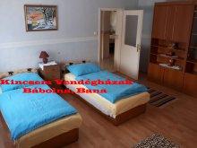Accommodation Komárom-Esztergom county, Kincsem Guesthouse