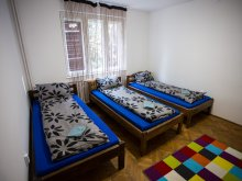 Cazare Biborțeni, Youth Hostel Sepsi