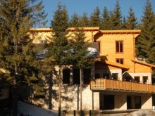 Hotel Csomortán (Lutoasa), Bagolykő Menedékház