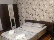 Accommodation Busulețu, Davison Villa
