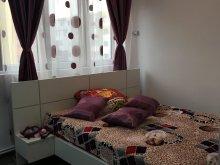 Accommodation Sânnicoară, Tamara Apartment
