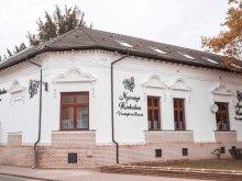 Pensiune județul Szabolcs-Szatmár-Bereg, Pensiune și Restaurant Nyírség Kiskakas