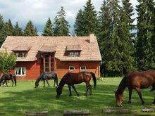 Accommodation Băile Homorod, Sopárkút Pension