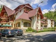Accommodation Brădețelu, Hotel Szeifert