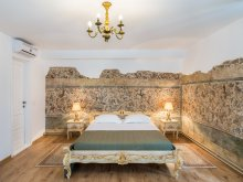 Accommodation Avrig, Astronomului House