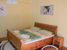 Accommodation Makó, Csilla Apartment