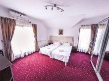 Accommodation Jichișu de Sus, Schwartz B&B