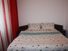 Accommodation Zărneștii de Slănic, Alexandru Apartment