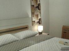 Apartament Cotenești, Apartament Lidia