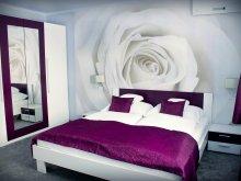 Accommodation Hungary, Kék Laguna Apartments