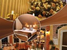 Hotel Felsőtárkány, Alfa Hotel & Wellness Centrum Superior