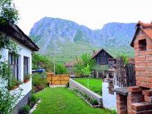 Szállás Valea Bârluțești, Nosztalgia Vendégház