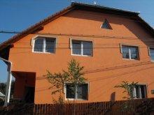 Vendégház Homoróddaróc (Drăușeni), Júlia Vendégház