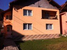 Villa Kisfehéregyház (Albeștii Bistriței), Livia Villa
