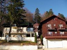 Accommodation Ungureni (Dragomirești), Darius Villa 1