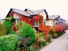 Accommodation Bodrog, Milexim Guesthouse