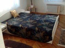 Accommodation Somogy county, Boglár Chalet