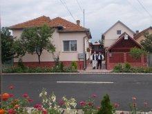 Vendégház Zăgujeni, Szatmári Ottó Vendégház