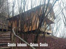 Cabană Piatra Fântânele, Cabana Csonka