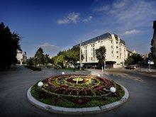 Hotel Felsőkarácsonfalva (Crăciunelu de Sus), Hotel Plaza V