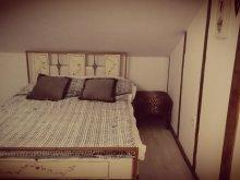 Apartment Suceava county, Vintage Apartment