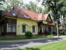 Accommodation Hungary, Villa Hotel