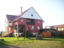 Guesthouse Bodoș, Alexandra Guesthouse